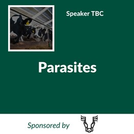 Parasites (Sponsored by Steerhead)