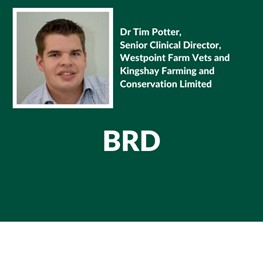 BRD, Dr Tim Potter, Senior Clinical Director, Westpoint Farm Vets and Kingshay Farming and Conservation Limited