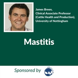 Mastitis (Sponsored by Boehringer), James Breen, Clinical Associate Professor (Cattle Health and Production), University of Nottingham