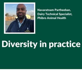 Diversity, Navaratnam Partheeban, Dairy Technical Specialist, Phibro Animal Health