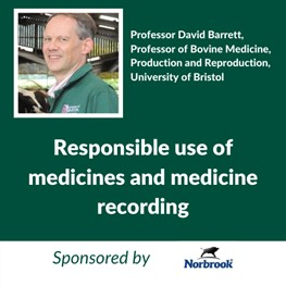 Responsible Medicines (Sponsored by Norbrook), Professor David Barrett, Professor of Bovine Medicine, Production and Reproduction, Bristol Veterinary School, University of Bristol