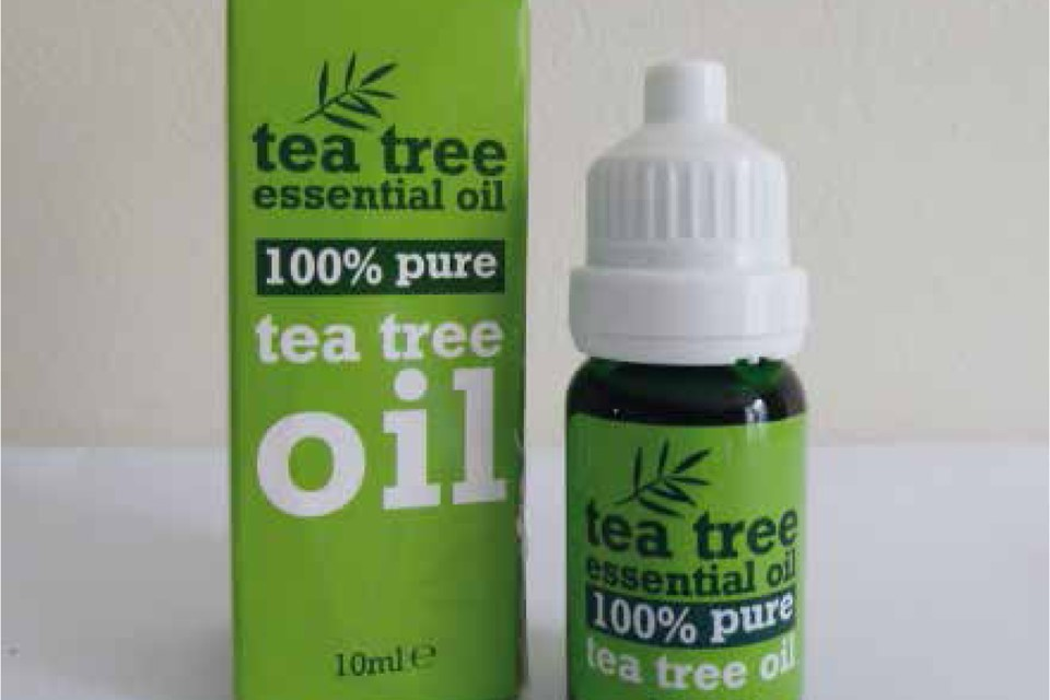 Tea tree oil exposure in cats and dogs
