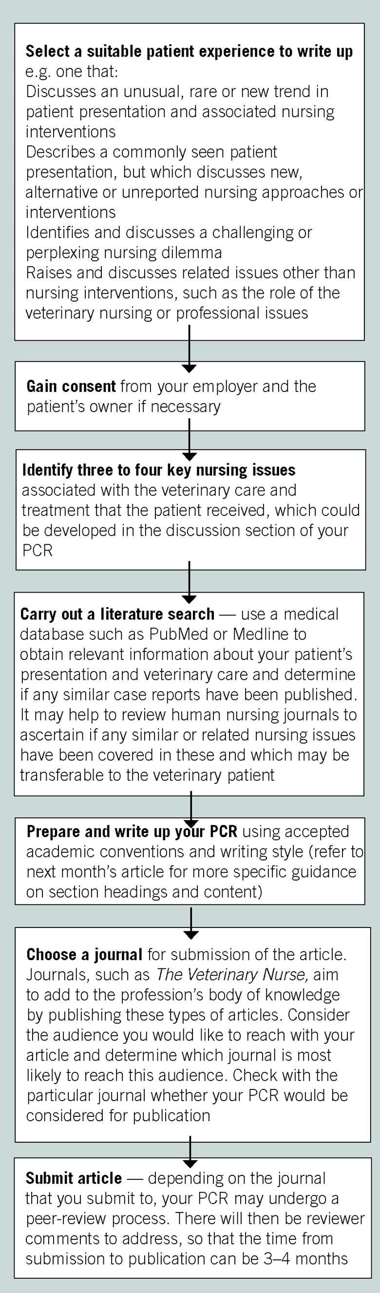 Writing patient care reports: author guidelines for VNs