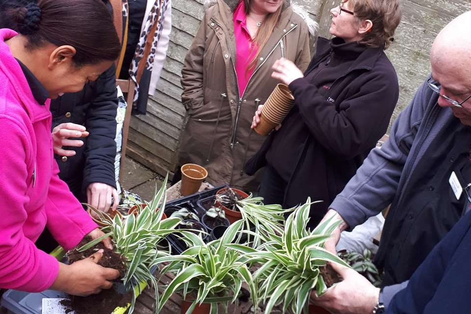 Parents get involved in outdoor gardening at Tops Day Nurseries.