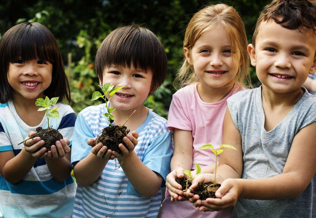 Children will enjoy discovering which plants can grow in pots