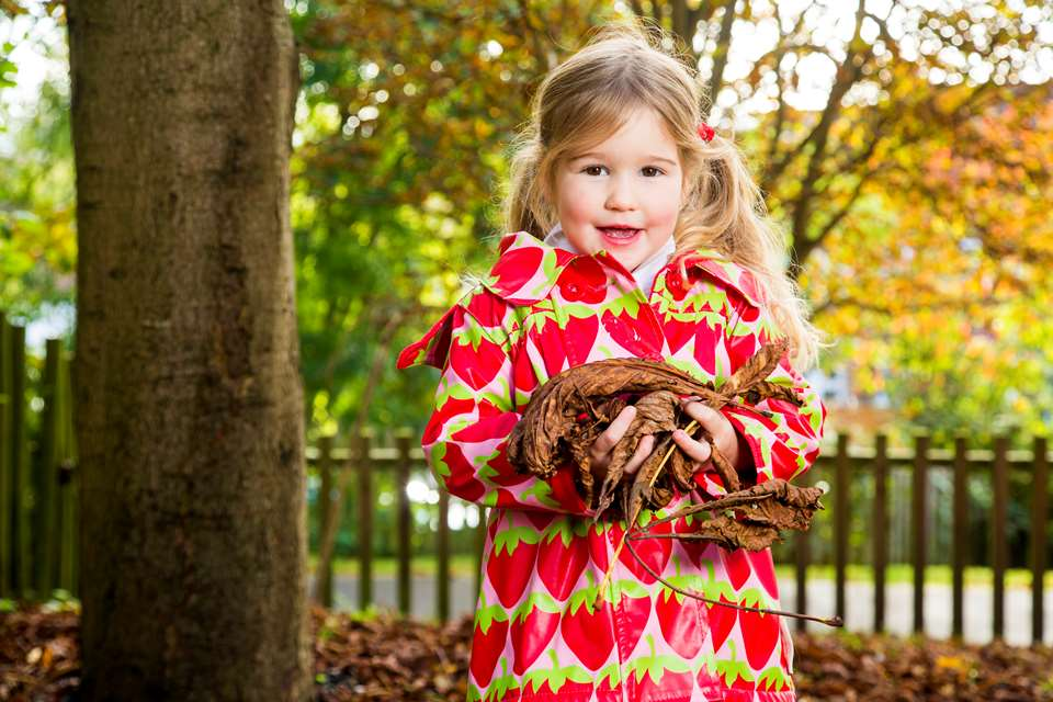 Autumn leaves – free and versatile!