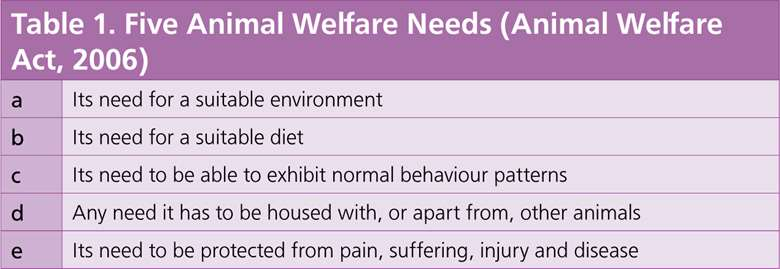 Table 1. Five Animal Welfare Needs (Animal Welfare Act, 2006)