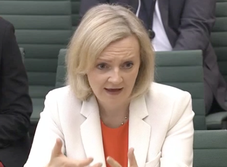 "Justice Secretary Liz Truss has said that the government's response to the Taylor review will help ""create a justice system that works for everyone"".  Picture: Parliament TV"