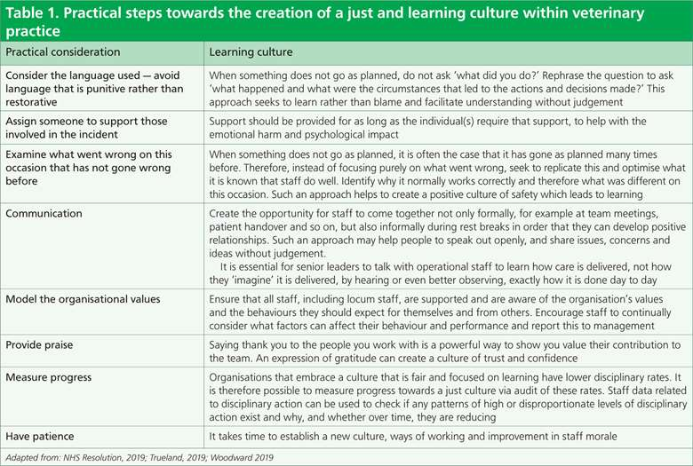 Table 1. Practical steps towards the creation of a just and learning culture within veterinary practice