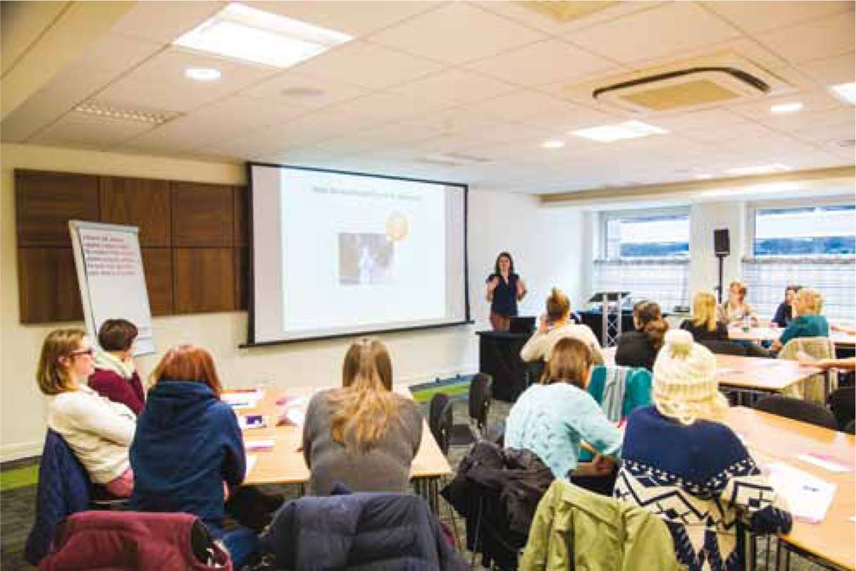 The Veterinary Nurse workshops 2015: feline patients and stress