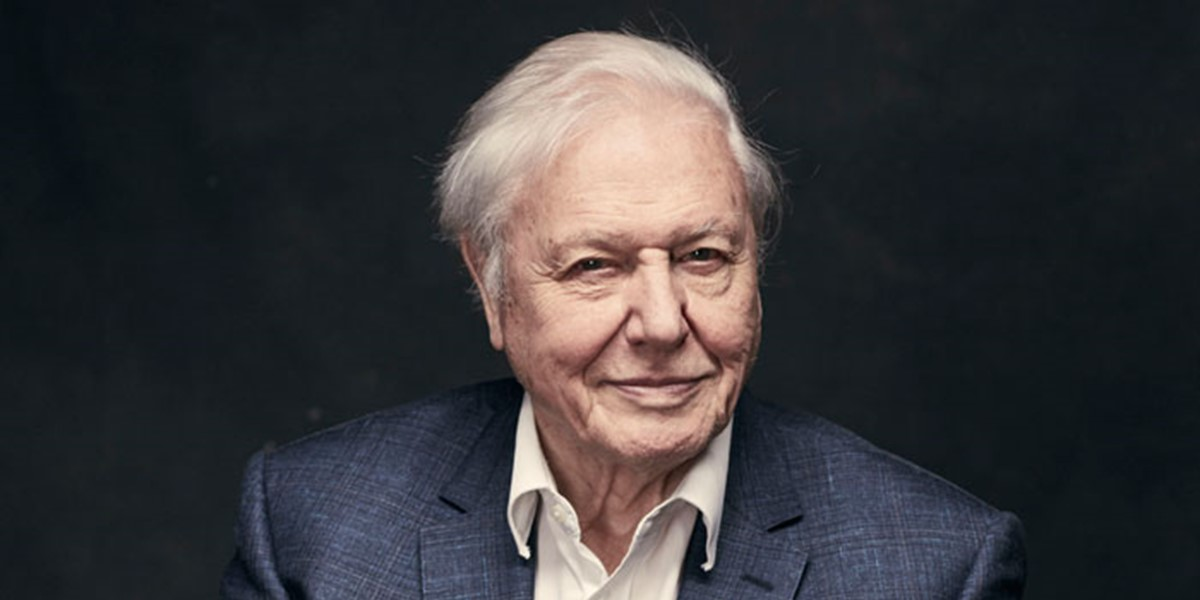 David-Attenborough-BBC_Sarah-Dunn-Free.jpg